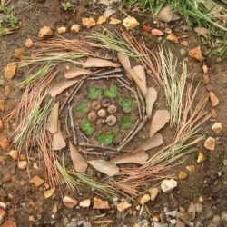 nature mandala Aimee Ray_feature